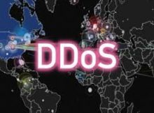 Americas Cardroom DDOS attack